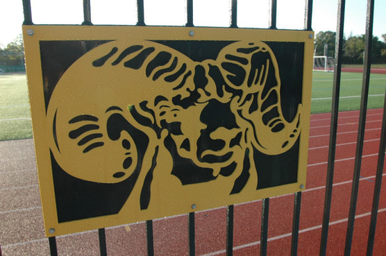 SUNY Farmingdale State Athletics