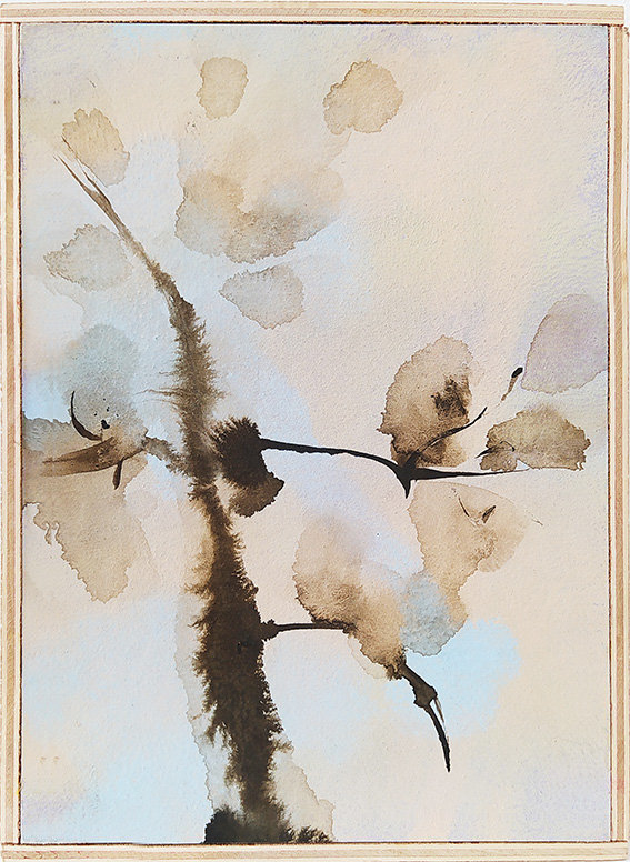 72 botanica18.jpg