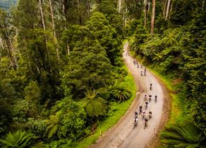 Bici Cross Country en las altas montañas