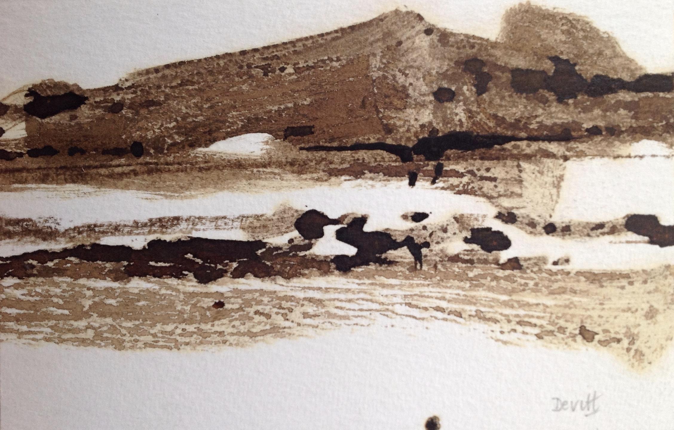 Little Ink Desert iv