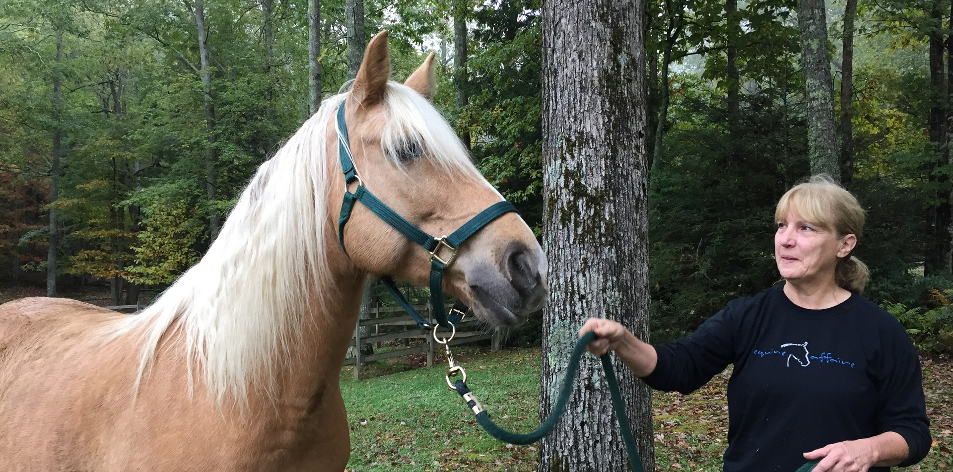 The equestrian center offers a seasonal live-in stable keeper. If you are interested in bringing your horse, please inquire with us for information and pricing.