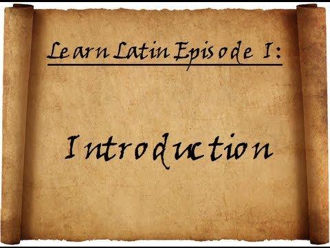 Intro to Latin ( Term )
