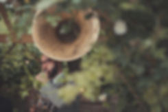 Big Brass Band _ Wedding Ceremony Band _