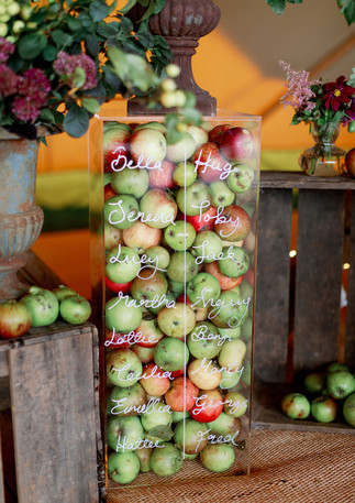 Apple Table plan wedding planning dorset