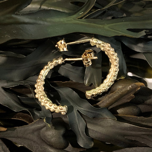 Seaweed Hoop Earrings - 9ct Gold