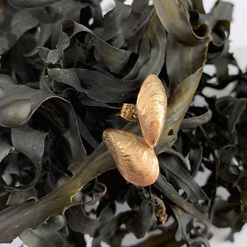 9ct Gold Mussel Earrings