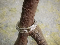 Silver reticulated Cornish ring with gold detail