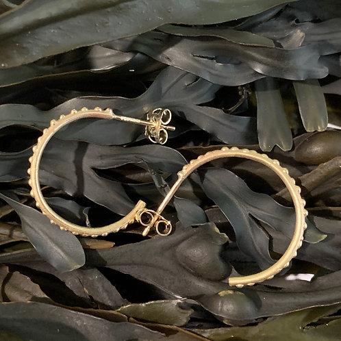 Seaweed Sandymouth Hoop Earrings - 9ct Gold