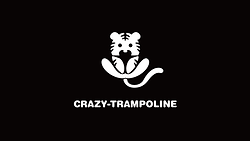 crazytrampoline.png