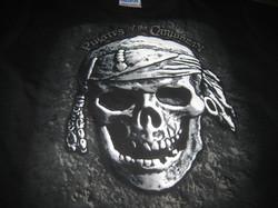 Disney T-Shirt Design using Puff Ink
