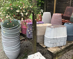 garden pots.jpg
