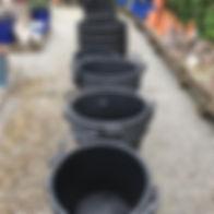 large utility specimen plant pots.jpg