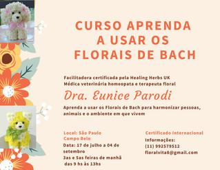 Curso Aprenda a Usar os Florais de Bach