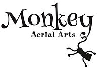 monkeyaerialartsworking.jpg