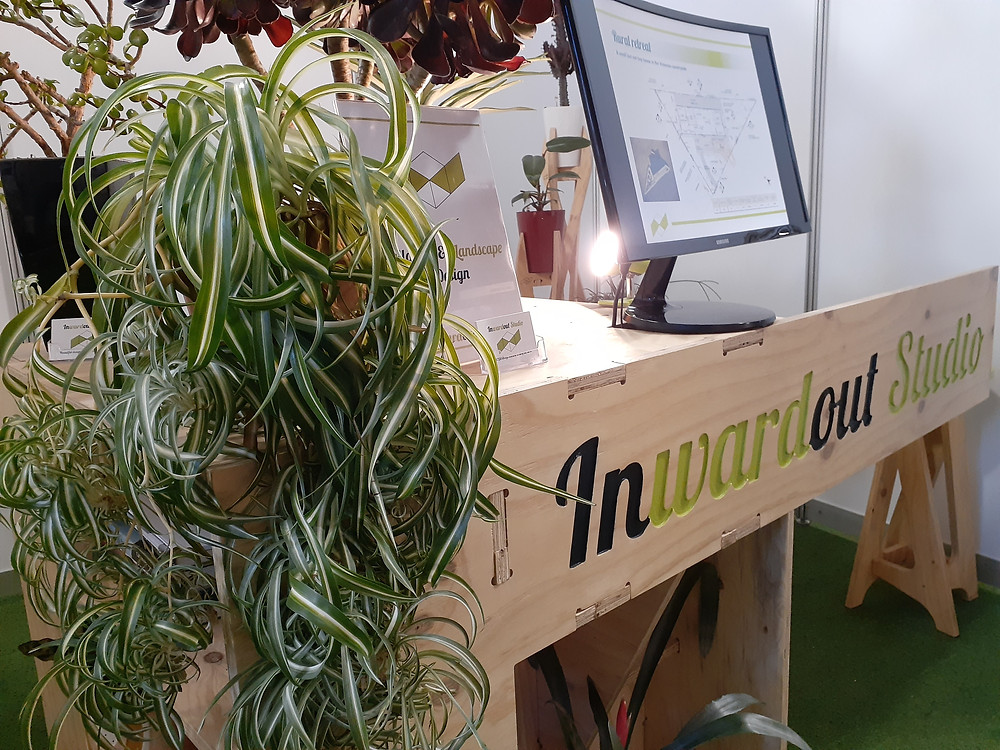An indoor plant commonly called the Spider Plant drapes over an event display made from CNC machined plywood