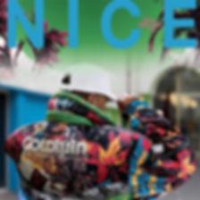 NICE tube cover.jpg