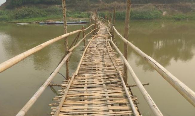 sustainable bamboo used for bridges
