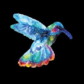 Colibri Freigestellt.png