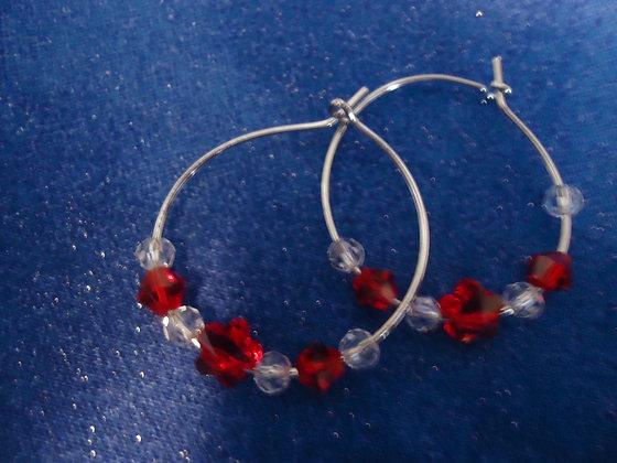 Hoop Earrings/HE235