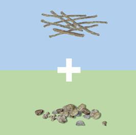 Sticks and Stones, 2005