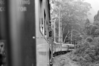 Train to Ella - Sri Lanka