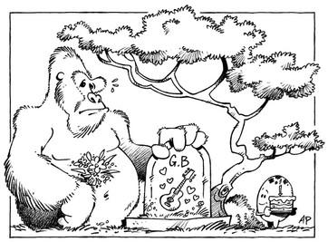 Gorille et fleurs.jpg
