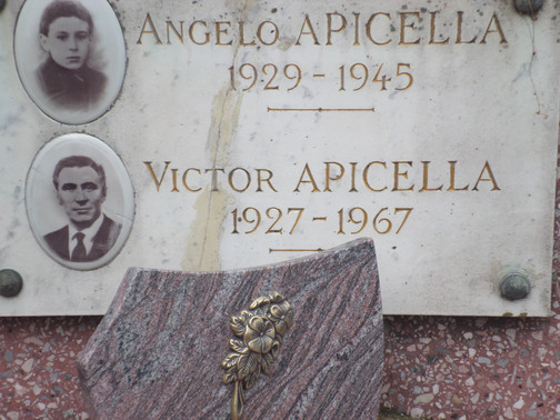 V-APICELLA.jpg