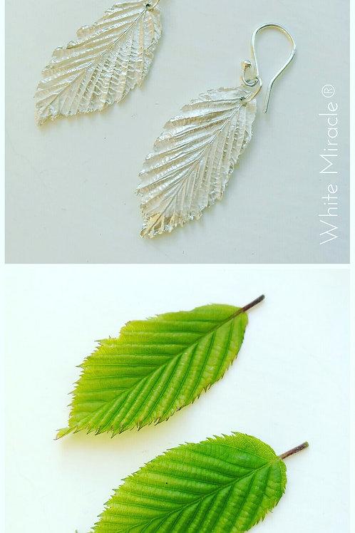 Pendientes hojas cerezo