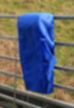 Lite cover blue 13th March.jpg