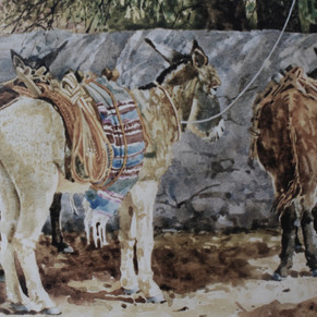The Donkey and Two Burros