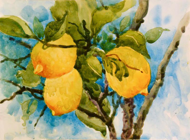 Lemons in Tuscany Watercolor Painting