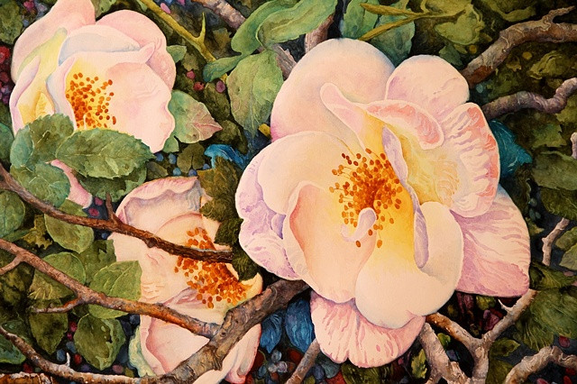 Wild Roses Watercolor Painting by Dennis Pendleton