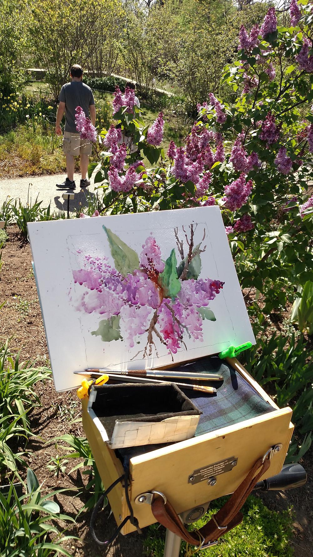   Denver Botanic Gardens Watercolor Class