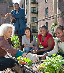 Jardinería comunidad
