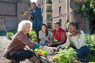 Jardinagem da comunidade