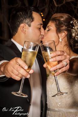 Amy_and_Xavier_Wedding_Houston_2016_478_IMG_0763