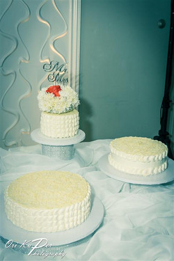 Irina & Leon Wedding Houston 381 IMG_9317
