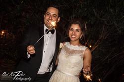 Amy_and_Xavier_Wedding_Houston_2016_717_IMG_1058