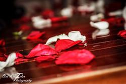 Galveston Wedding Photographer_1486