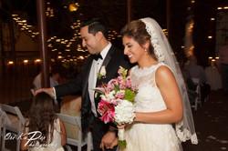 Amy_and_Xavier_Wedding_Houston_2016_231_IMG_0375