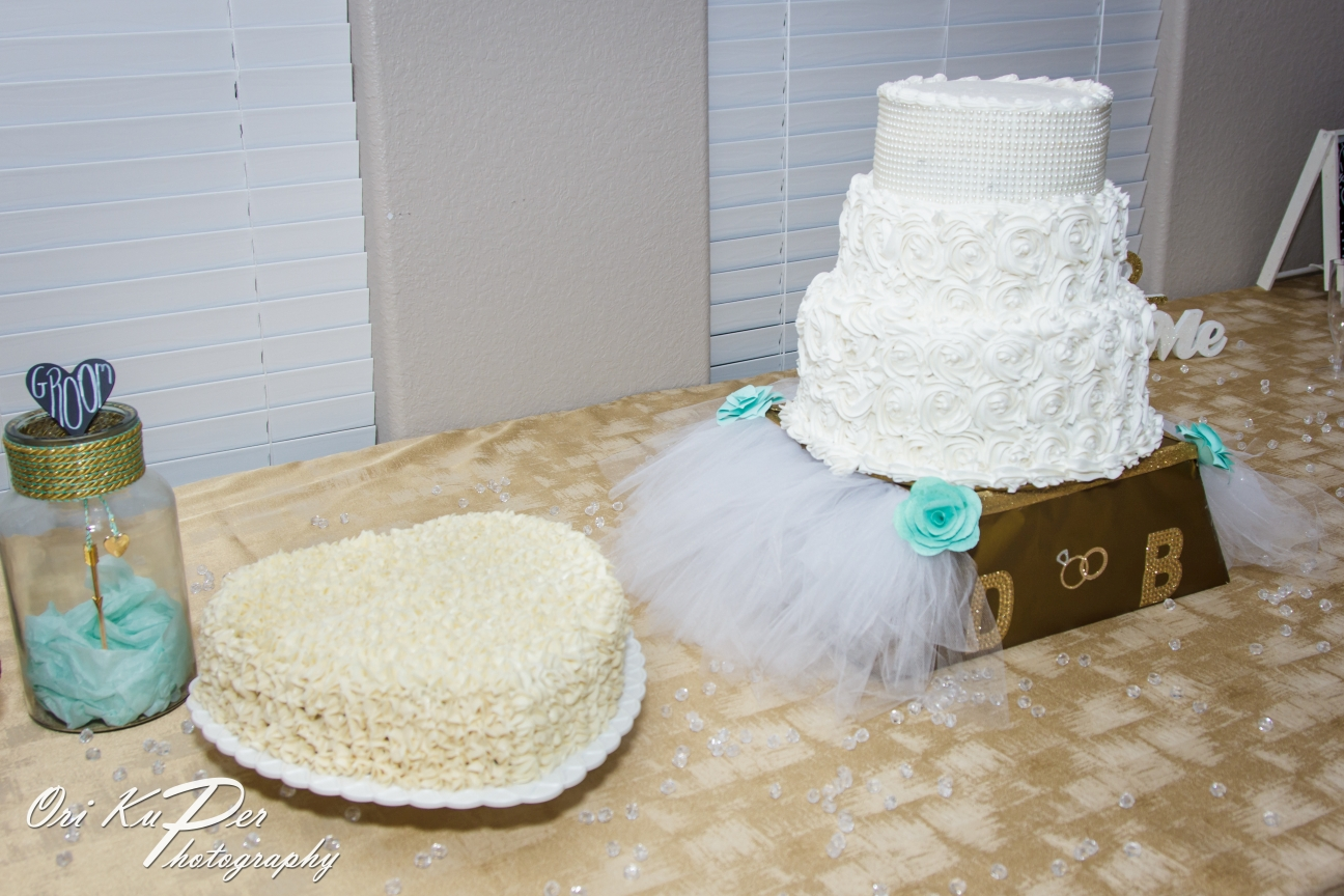Brianna and Don Wedding 025 Pearland Houston Photographer www.HOUvideographers
