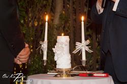 Amy_and_Xavier_Wedding_Houston_2016_206_IMG_0345