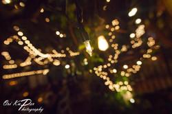 Amy_and_Xavier_Wedding_Houston_2016_367_IMG_7960