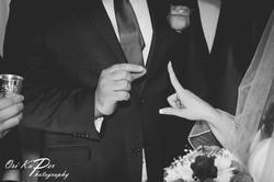Irina & Leon Wedding Houston 197 IMG_9073