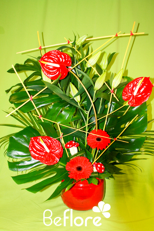 plantes fleuries (26)