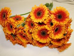 Bouquet de Germinis 2,10 €