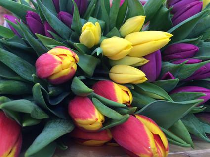 Bouquet de tulipes 3€99