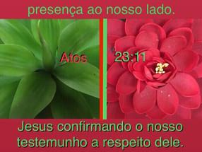 As confirmações de Deus confirmam sua presença conosco!