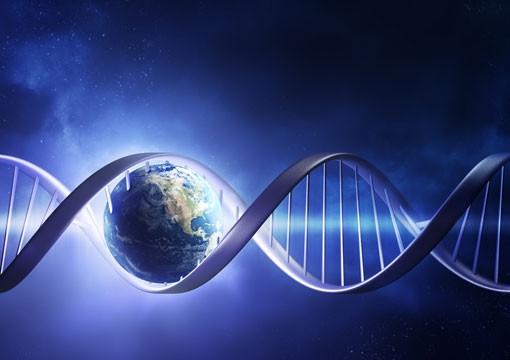 O DNA pode ser Influenciado e Reprogramado pela Intenção