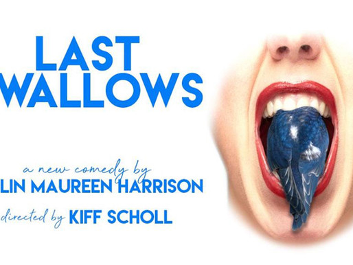 """REVIEW: """"Last Swallows"""" — The Other Space @ The Actors Company, West Hollywood"""